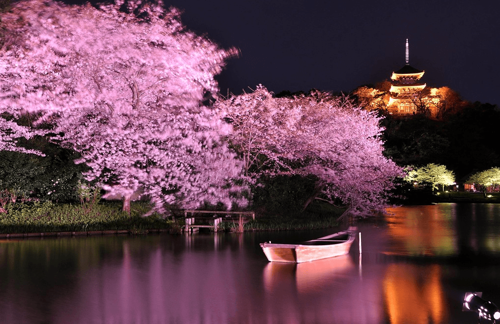 Taman Senkeien musim Sakura