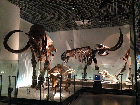 Museum Sains Nasional
