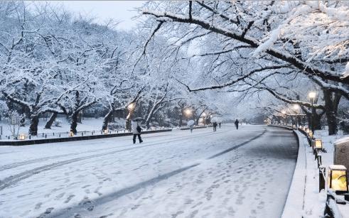 Ueno Park in Winter