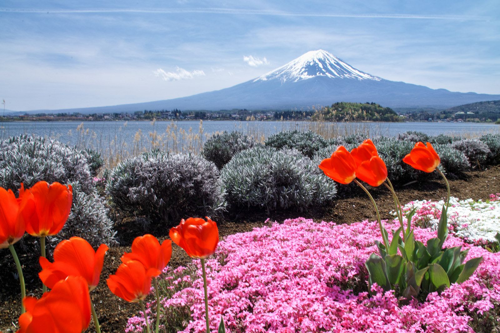 Kawaguchi Spring
