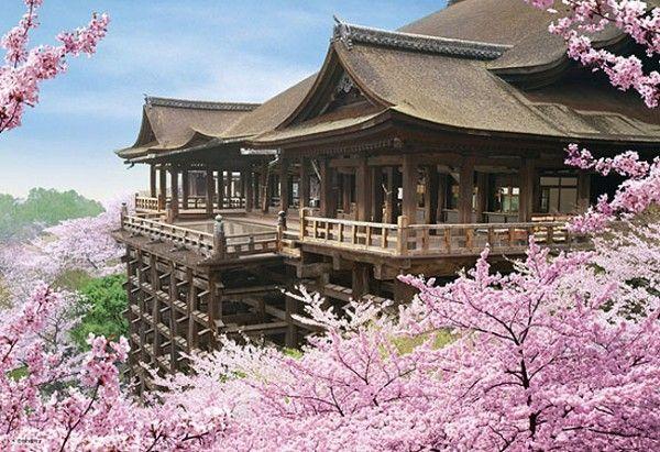 Kiyomizudera Sakura