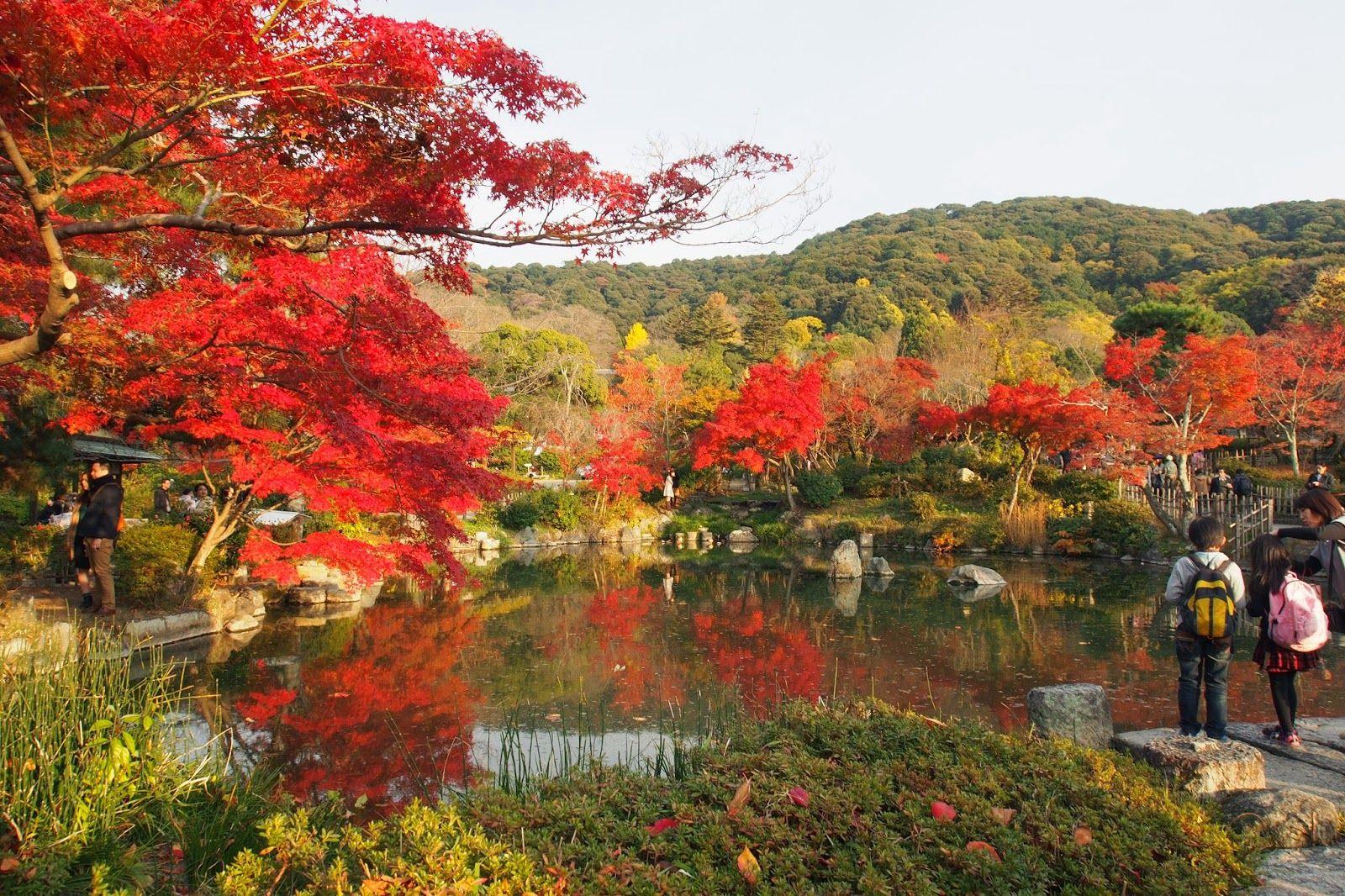 Maruyama Park Autumn