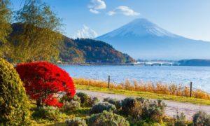 """Paket Trip ke Jepang """"Summer"""" 15 Juni – 20 Juni 2018"""