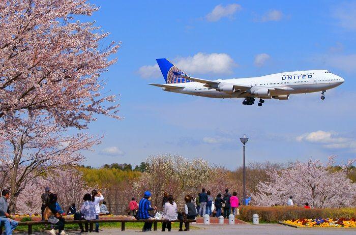 Penerbangan ke Jepang dengan Budget airline
