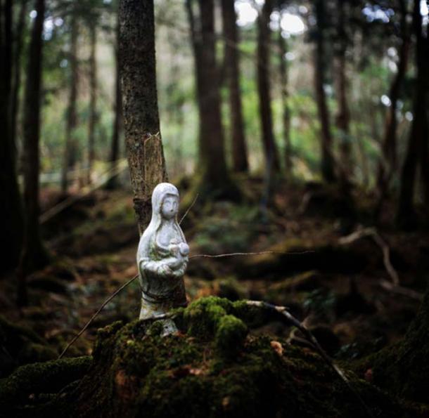 hutan bunuh diri jepang Aokigahara