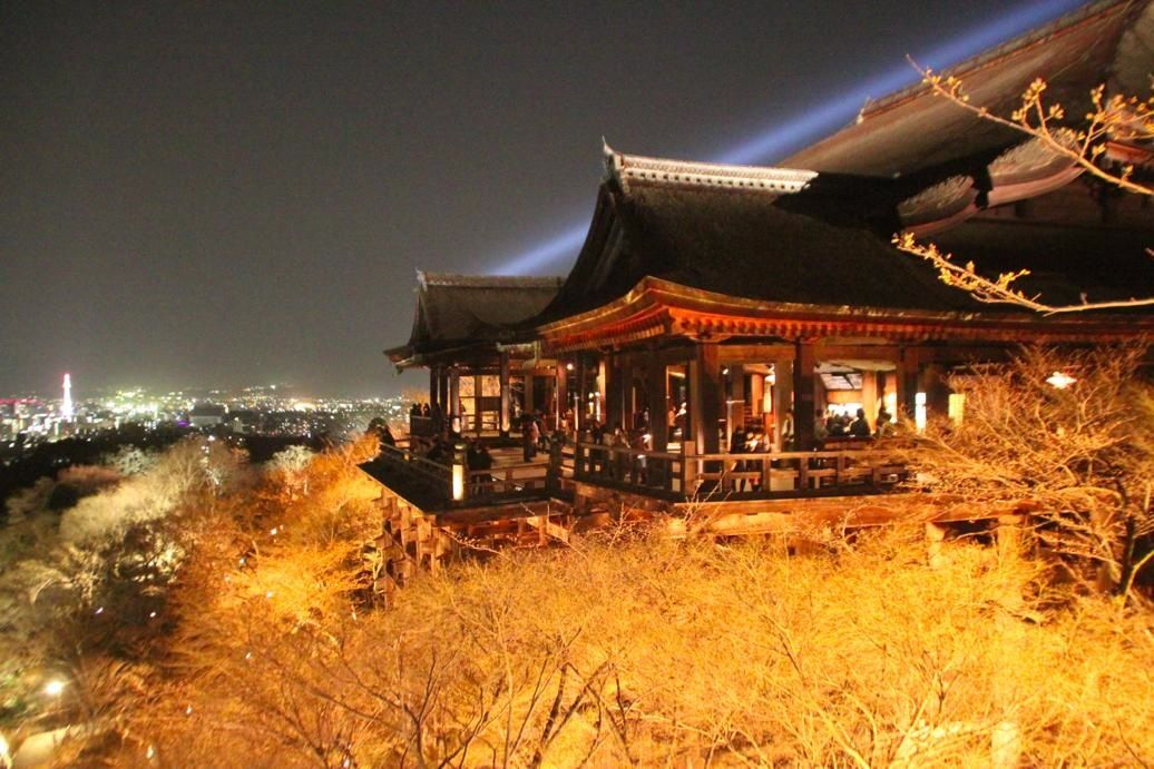Kiyomizudera Night