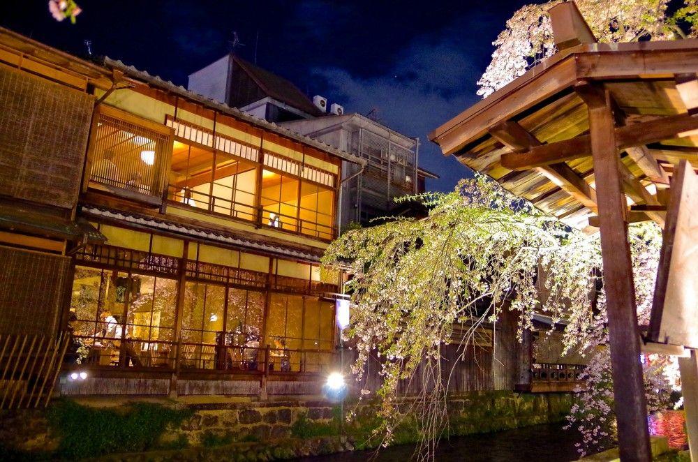 Sakura light up di Shirakawa