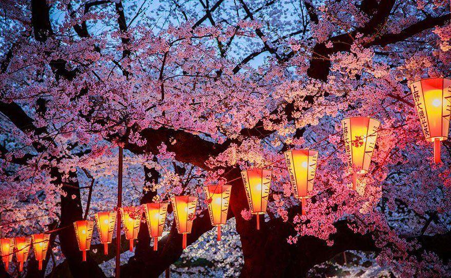 Paket Tour Ke Jepang 4 Hari 3 Malam April / Musim Semi (Spring) 2018