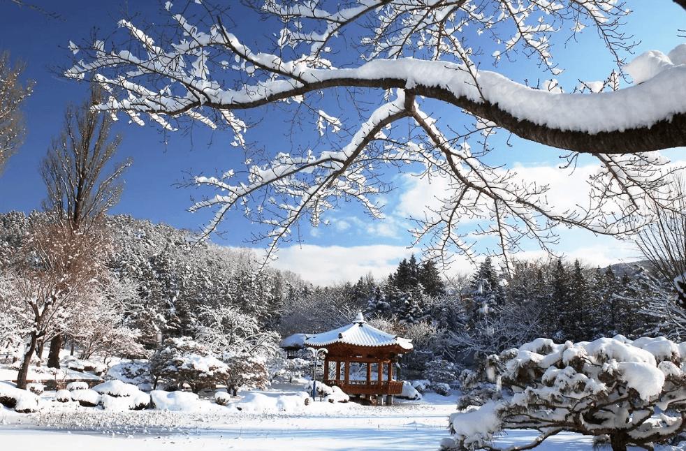 Paket Tour ke Jepang 5 Hari 4 Malam Januari Musim Dingin (Winter) 2019