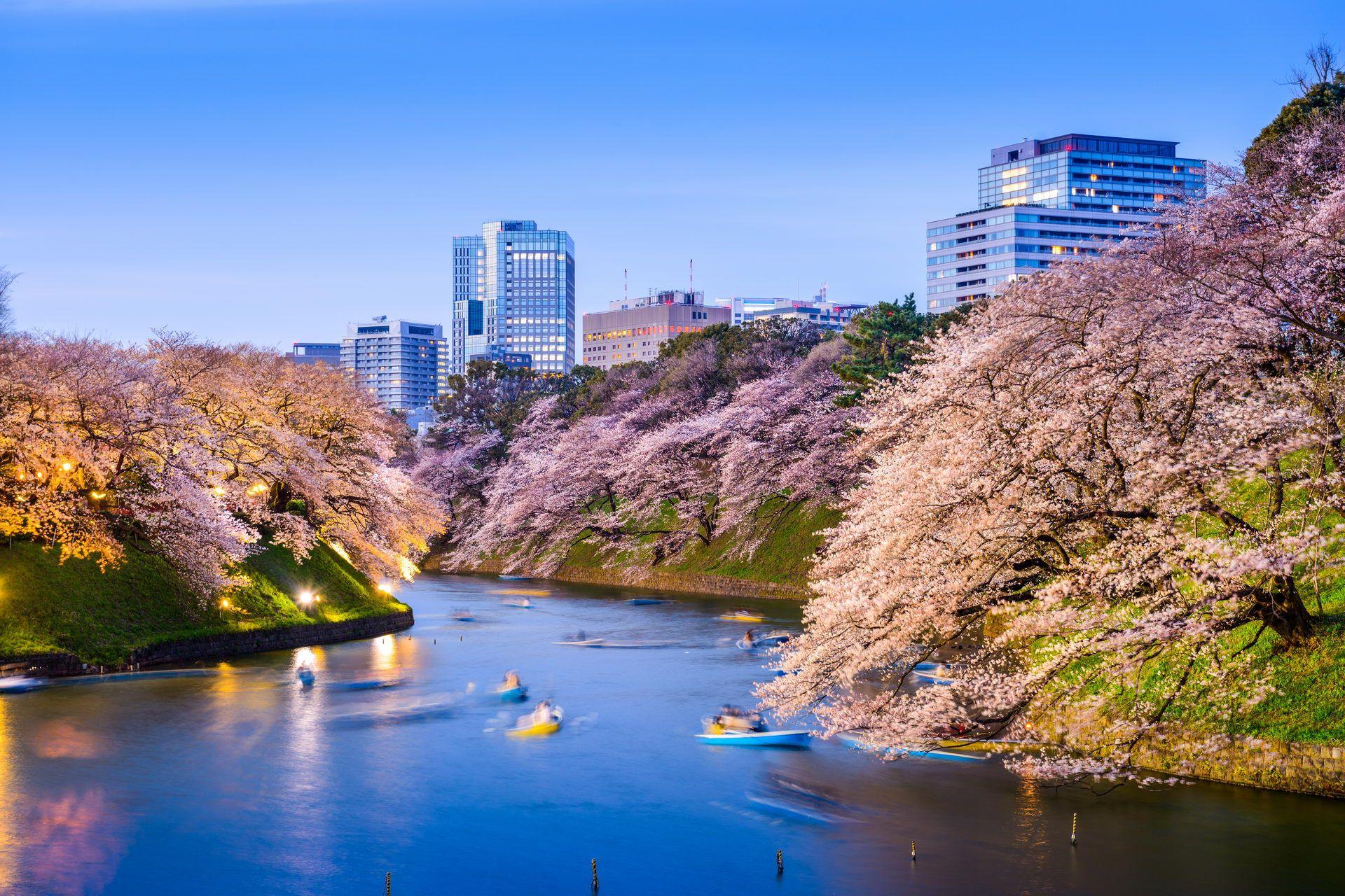 Paket Tour Jepang 4 Hari 3 Malam