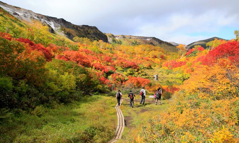 Taman Nasional Hokkaido