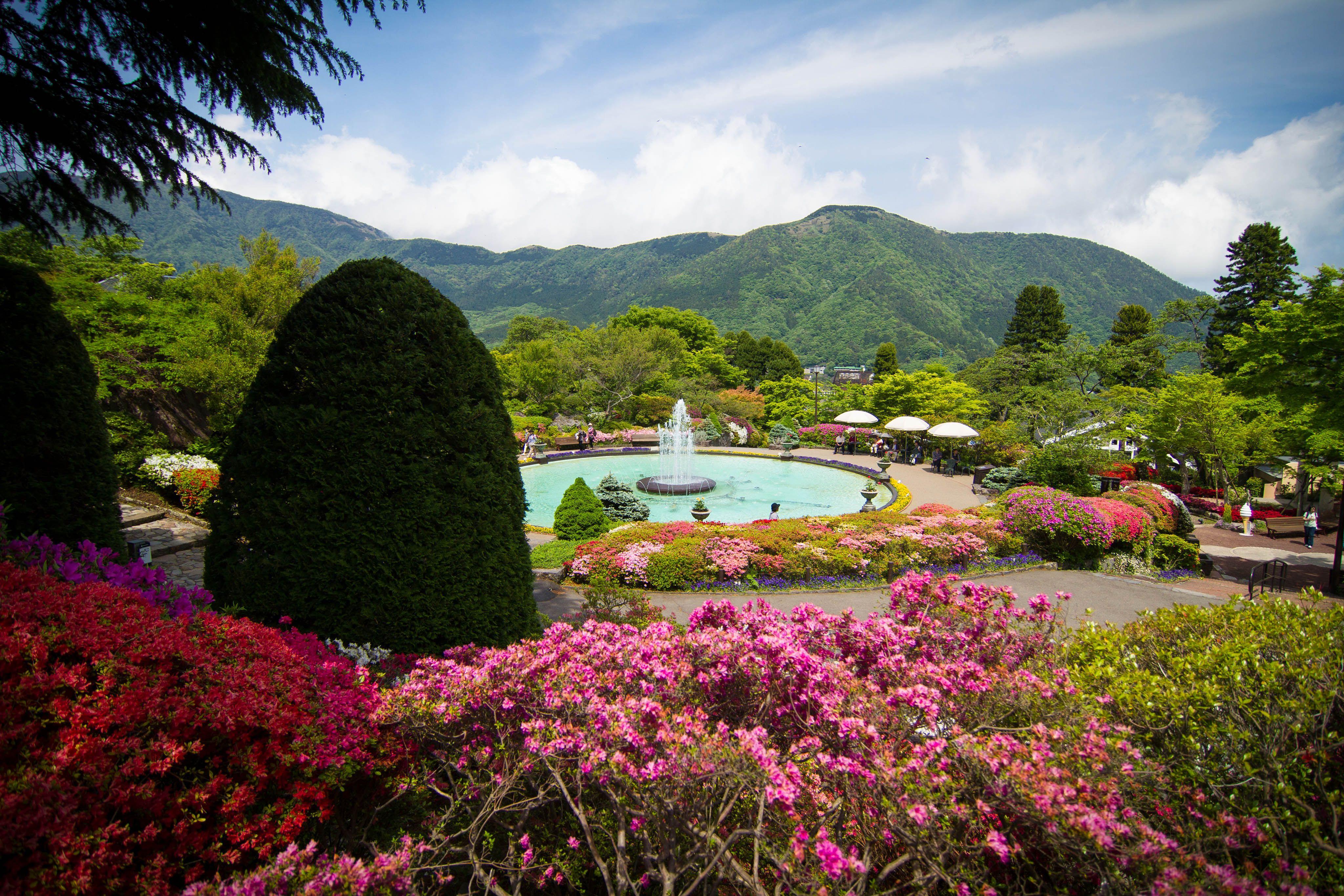 Taman Gora Jepang