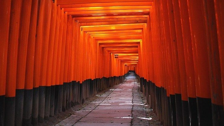 Jalan Setapak melalui Terowongan Gerbang Torii