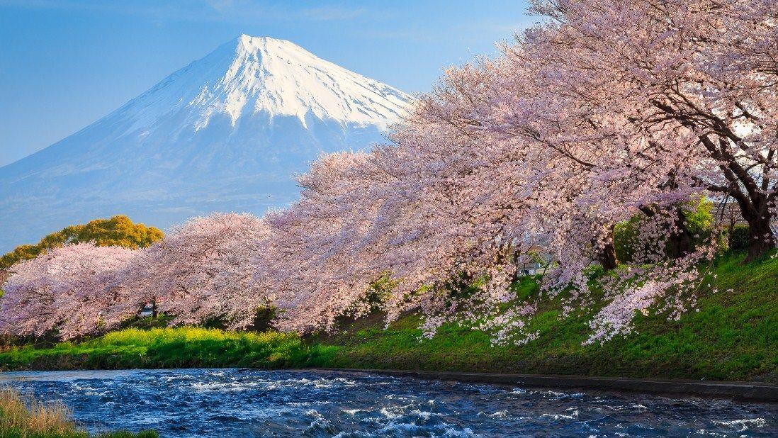 Pariwisata di Jepang