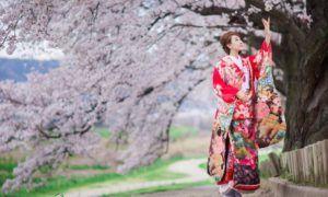 9 Tips Menikmati Musim Sakura di Jepang, Berasa Kayak Orang Lokal