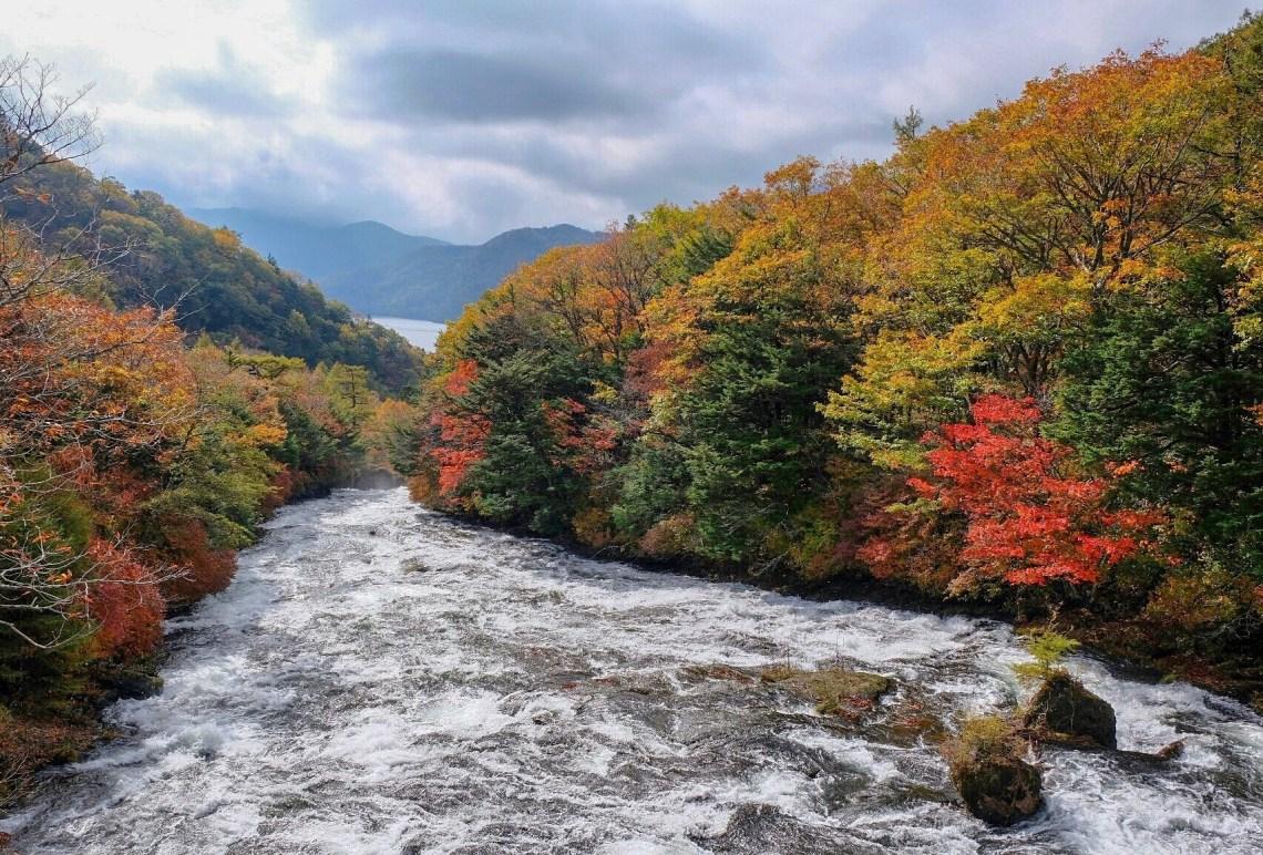 Air Terjun Ryuzu Nikko, Destinasi Wisata Yang Mempesona Sepanjang Tahun