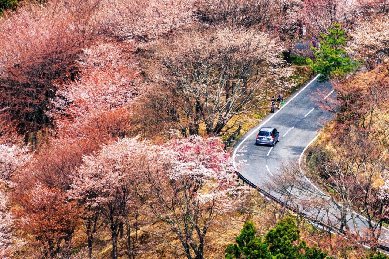 Yoshino, Nara