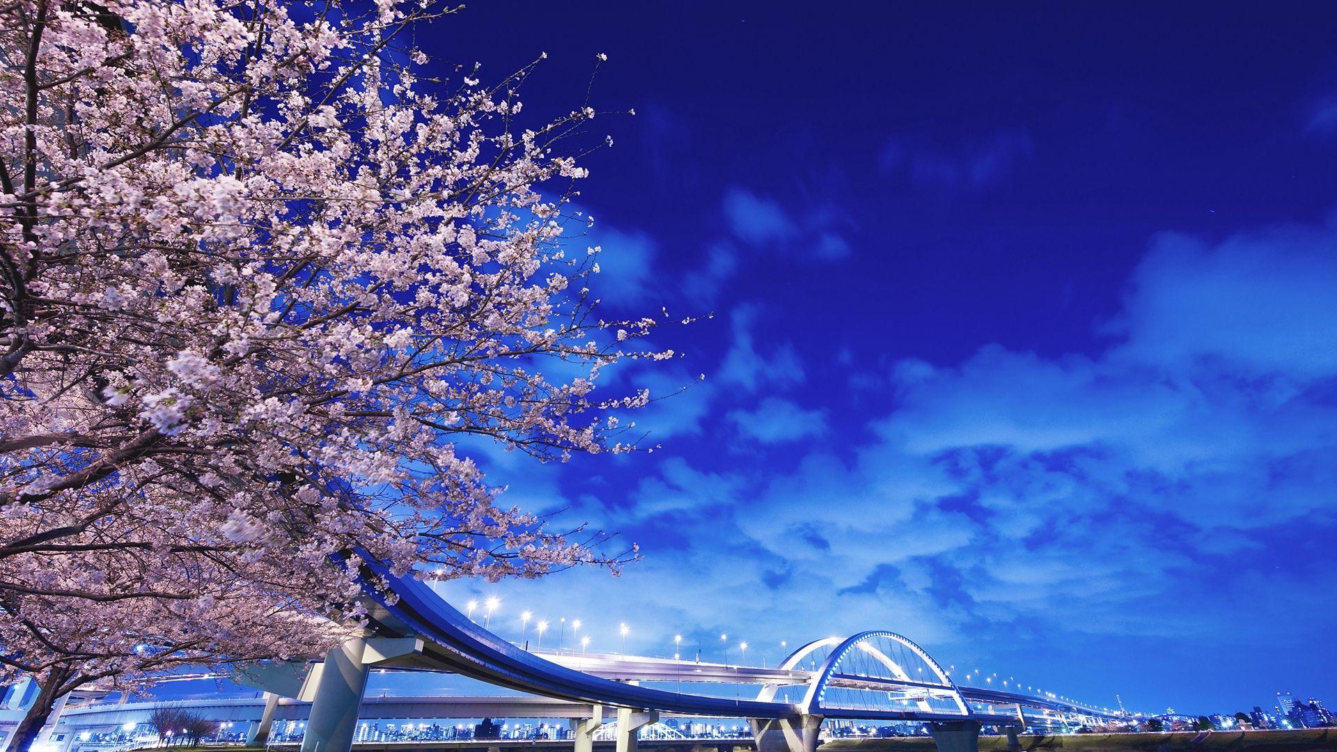 Hokkaido Local Tour