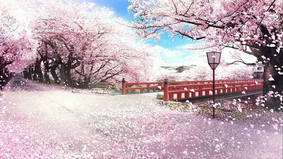 Promo Paket Tour Ke Jepang Spesial Sakura