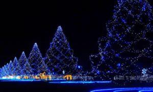 Promo Paket Wisata Tour Jepang Spesial Natal Dan Tahun Baru