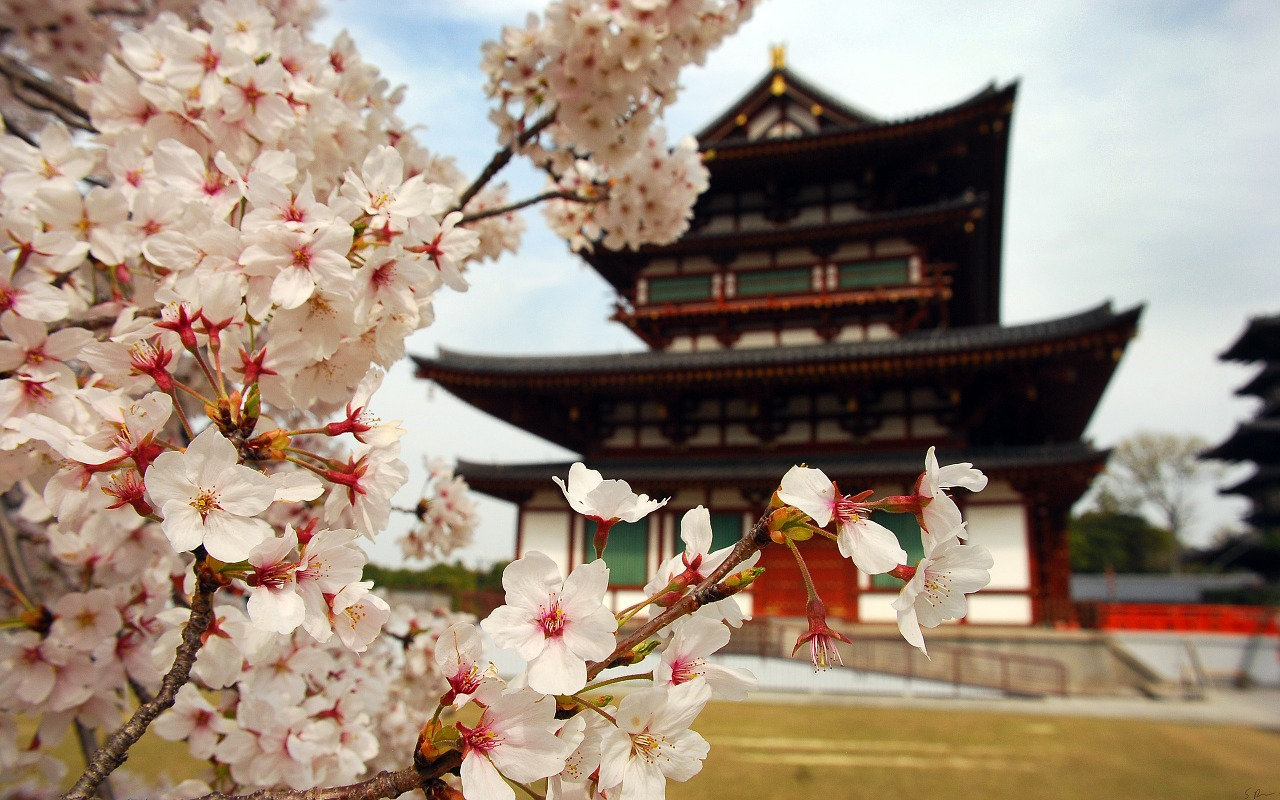 Apa Saja yang Harus Dipersiapkan dan Dibawa Liburan ke Jepang